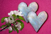 Two shiny heart with appleblossoms — Stock Photo