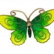 Stock Photo: Grandmas butterfly brooch