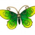 Grandmas butterfly brooch — Stock Photo