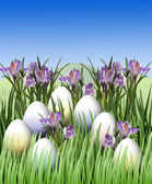 Easter egg and crocus — Stock Photo