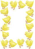 Kyckling ram — Stockfoto