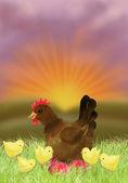 Kyckling och höna i solnedgången — Stockfoto