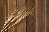 The Wheat on the wood background — Stock Photo