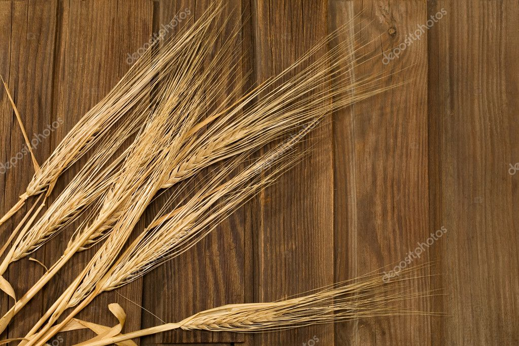 Wheat Ears on the Wood Background — Stock Photo #8075862