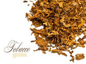 Tobacco — Stock Photo