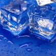 Thawing cubes — Stockfoto