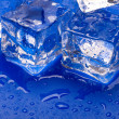 Thawing cubes — Stock Photo