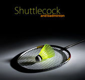 Shuttlecock and badminton — Stock Photo