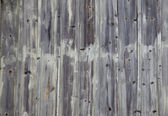 Grey weathered wood panel — Stock Photo
