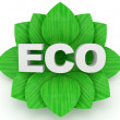 ECO word and green leafs over a white background — Stock Photo