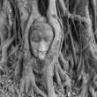 Stock Photo: BuddhHead, Ayuthaya
