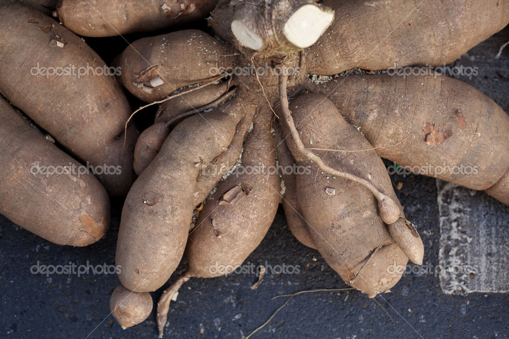 Cassava root — Stock Photo #10051552