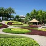 Tropical Garden — Stock Photo #10478868