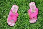 Zapatos en césped — Foto de Stock