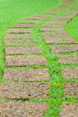 Garden stone path with grass — Stock Photo