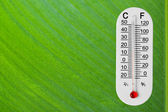 Thermometer on green leaf — Stock Photo