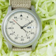 Watch with green vegetables — Stock Photo
