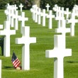 american military cemetery — Stock Photo