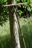 Wooden Rake — Stock Photo