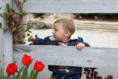 Garden baby — Stock Photo
