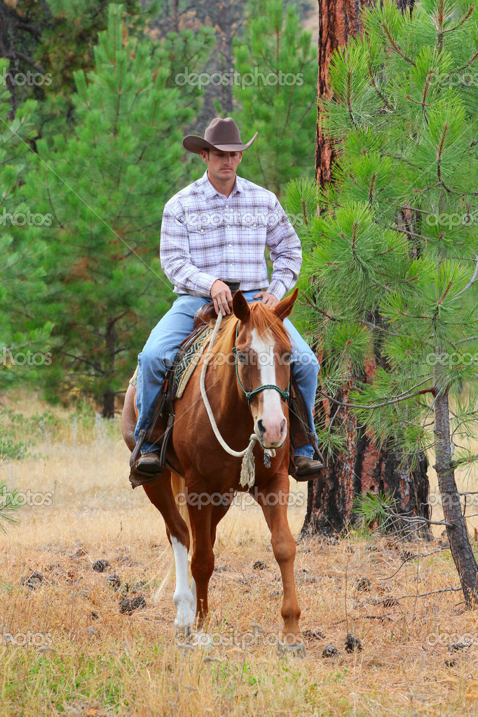 Cowboy working his horse in the field  Stock Photo #8153838