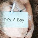 Постер, плакат: Pregnancy