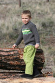 Boy in Woods — Stock Photo