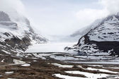 Columbia Icefield — Stock Photo