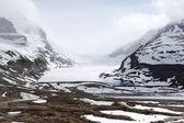 Columbia Icefield — Stock Photo
