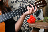 Music and Roses — Stock Photo
