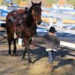 Cowboy — Stock Photo #8448880