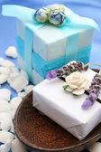 肥皂盒 — 图库照片