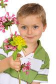 Flores — Fotografia Stock