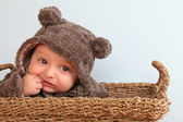 Baby bear — Stock Photo
