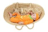 Pumpkin baby — Stock Photo