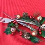 Christmas Dinner — Stock Photo #9270320