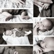 Baby kollektion — Stockfoto #9285229