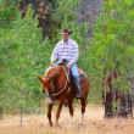 Cowboy — Stock Photo #9285808