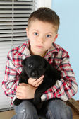Boy and puppy — Stockfoto