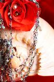 Valentine Rose — Stock Photo