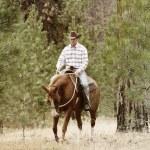 Cowboy — Stock Photo #9328209
