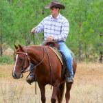 Cowboy — Stock Photo #9354736