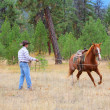 Horse trainer - Stock Photo