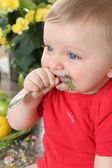Kitchen baby — Stock Photo