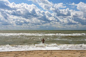 Black Sea. — Stock Photo