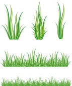 Reeks van groen gras — Stockvector