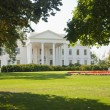 The White House — Foto de Stock
