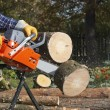 Chainsaw — Stock Photo #9728228