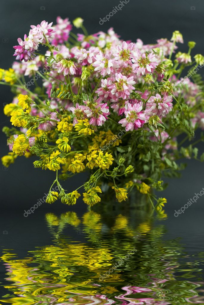 Bouquet of different wild flowers with reflection in the water on a dark background — Stock Photo #8415851