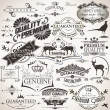 Vector de stock : Set of vintage design elements